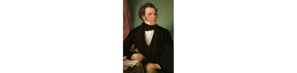 Franz Schubert by Wilhelm August Rieder, 1875